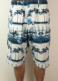 aloha_shorts-bl.jpg