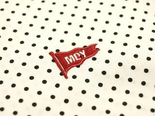 mdy3.JPG